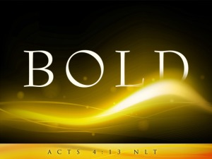 bold_t1