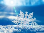 Snowflake-Pictures