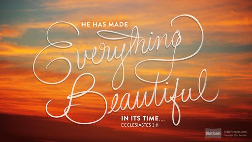 Ecclesiastes 3-11 he has made everything beautiful in its time