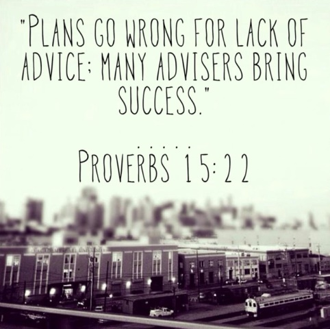 Proverbs 15-22 plans succeed with advisers